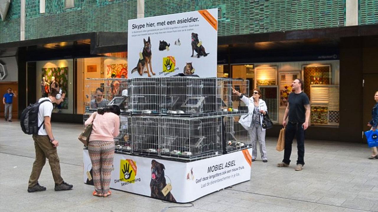 Dierenbescherming-Kanjercampagne-brand-activation